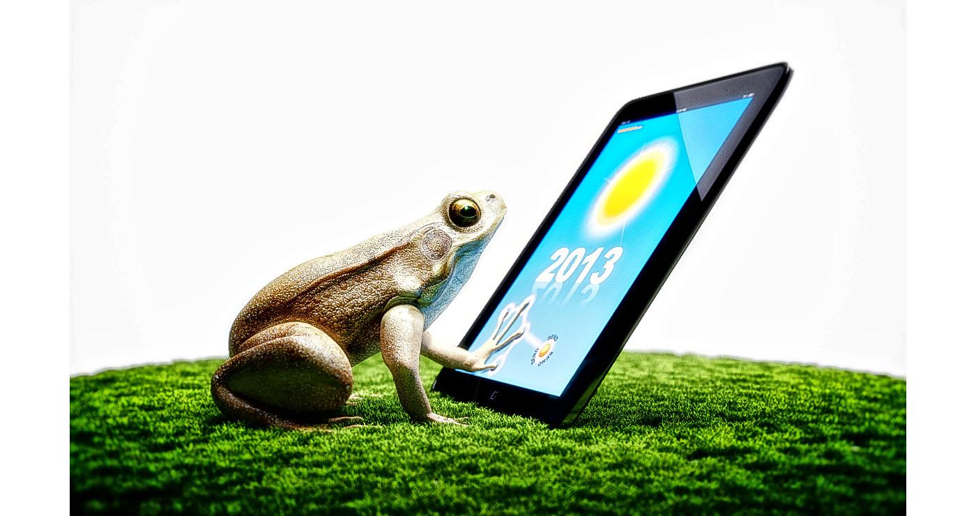 illustration-3D-philippe-raimbault-grenouille-meteo