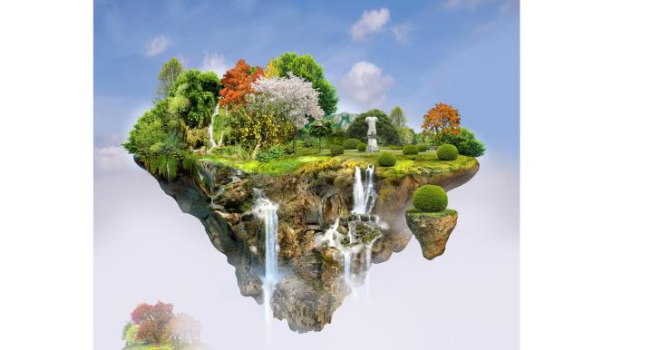 Marcel LAVERDET 3D - illustrations -  - Botanique