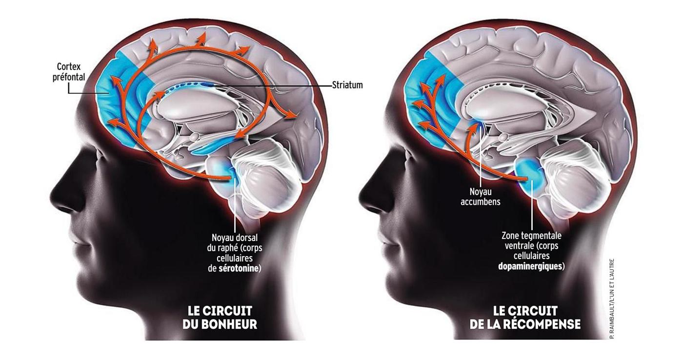 raimbault-philippe-illustration-rough-story-board-animation-paper-art-3d-magazine-lexpress-lun-et-lautre